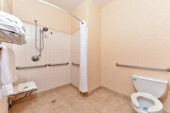 Wixom, MI: Guest Bathroom