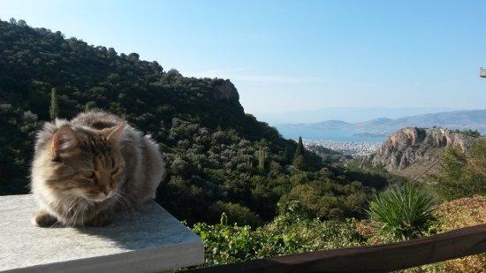 Makrinitsa, Grecia: 20160925_095957_large.jpg