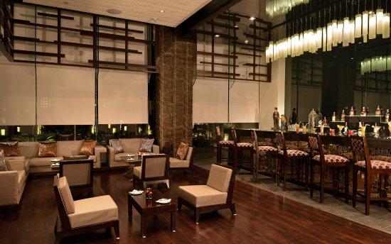 Hilton Garden Inn Gurgaon Baani Square India 사진