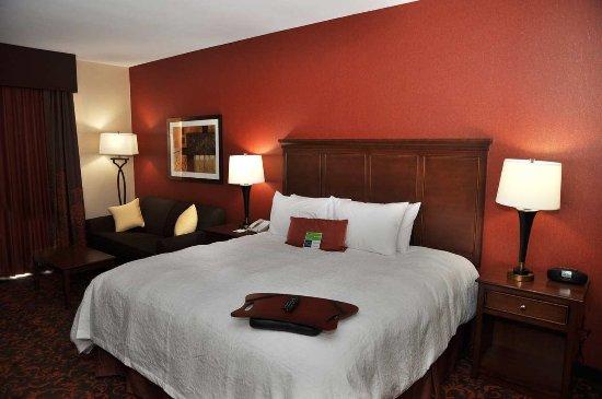 Hampton Inn by Hilton Edmonton/South: King Room