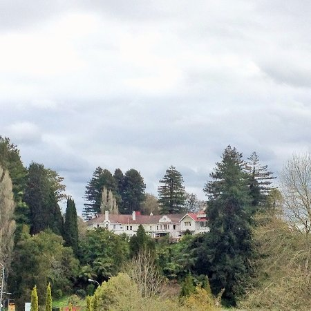 Waitomo Caves Hotel: The hotel is in a lovely tree-filled setting