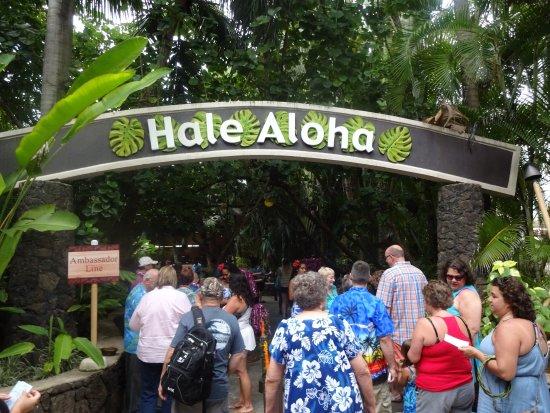Discover Hawaii Tours: Luau time!
