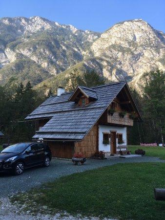 Alpik Apartments at Lake Bohinj: photo0.jpg