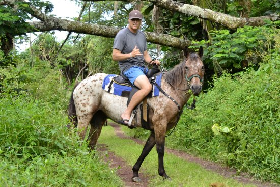 Pahoa, HI: Jungle ride