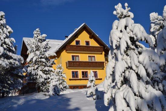 Gasthof Pension Alpenrose