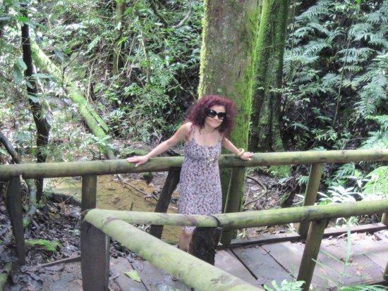 Ciudad Colon, Costa Rica: Caminata aun libre de barro, ja ja ja pero el lodo es parte de la aventura!