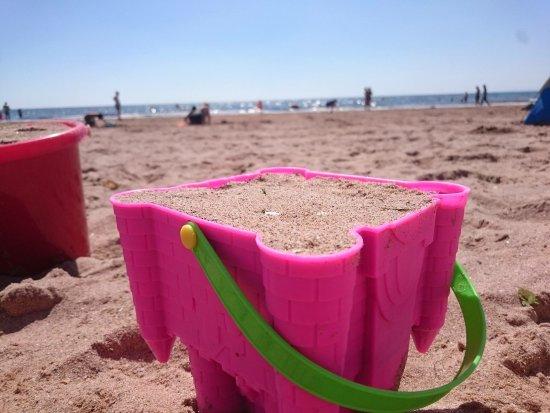 Exmouth, UK: Sandy Bay Beach