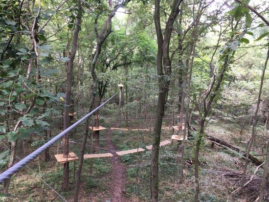 Noblesville, IN: Koteewi Aerial Adventure
