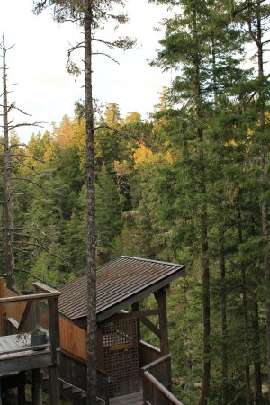 Halfmoon Bay, Canadá: Overlooking Hot tub views from cottage