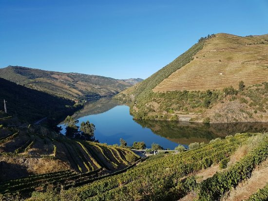 Quinta do Pego: 20160928_093312_large.jpg