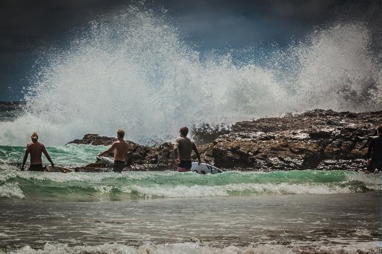 Snapper Rocks: great location to watch the world go by
