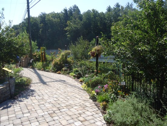 Lake Lure, Kuzey Carolina: Garden walkway