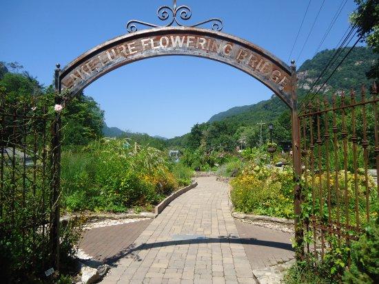Lake Lure, Carolina del Norte: Flowering Bridge