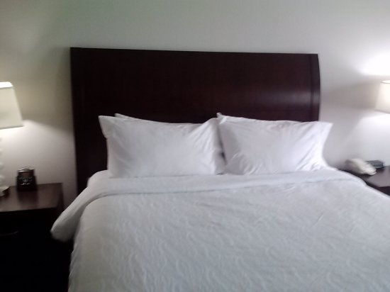 Hilton Garden Inn South Bend: Bed