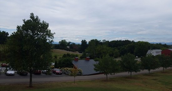 Barboursville winery from the second floor