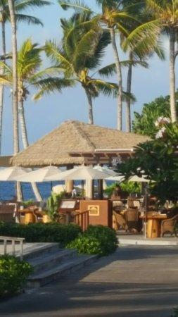Beach Tree Bar & Grill: 20160929_170613_large.jpg
