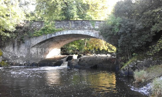Chulmleigh, UK: Bridge Pool - Home Beat
