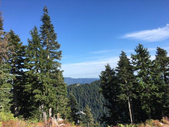 Grouse Mountain Skyride: photo1.jpg