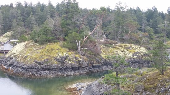 Halfmoon Bay, Kanada: Some of what you see towards the end of the trail.