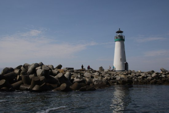 California Classic Sail: Loved every minute of our sailing trip with Capt. Forrest.  Time well spent!  Peaceful, insightf