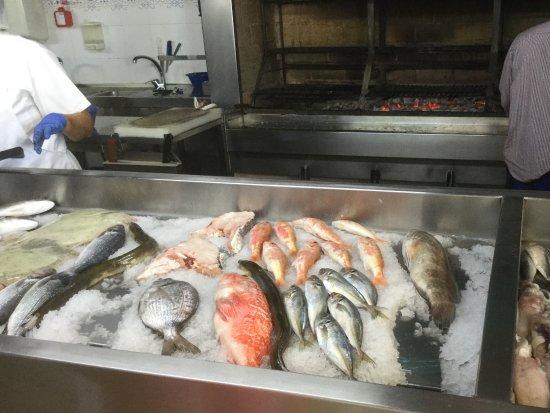 Alcochete, Portugal: Balcão de peixe.
