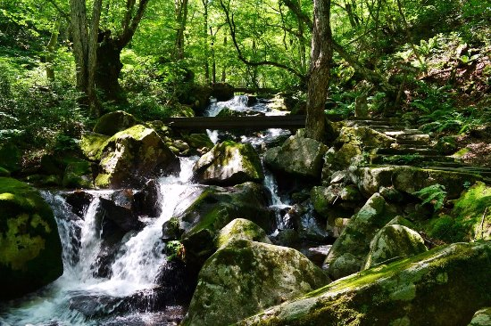 Utsueshijuhachitaki Falls Prefectural Nature Park