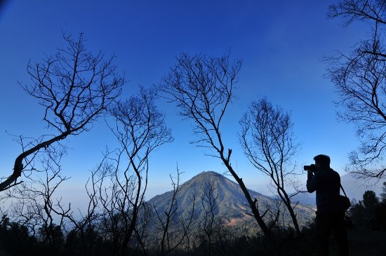 Banyuwangi 사진