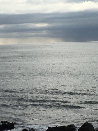 New Plymouth, Nowa Zelandia: photo1.jpg