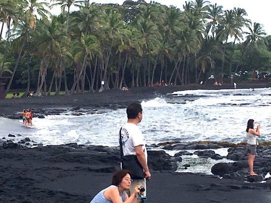 Kamuela (เมืองคามิวลา), ฮาวาย: Visit Black Sand Beach, a famous place for Honu (Sea Turtles) on a loop tour charter!