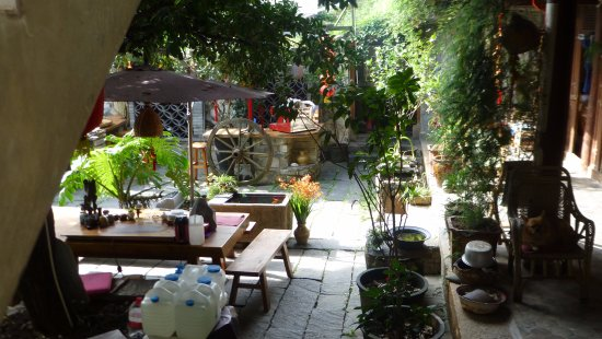 Qingxin Courtyard : Cour carrée
