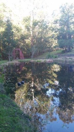 Yatte Yattah, Australie : The dam.
