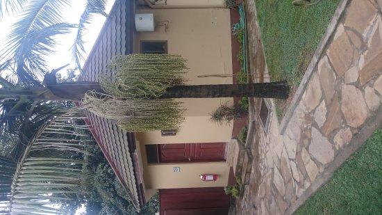 Ahadi Lodge : DSC_0694_large.jpg