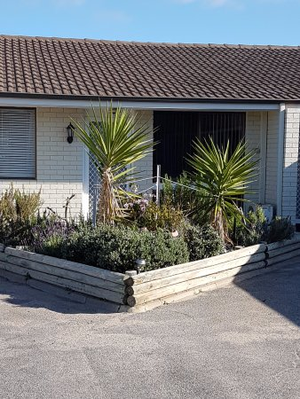 Dongara, Australia: Garden area outside front door with lavender smell.