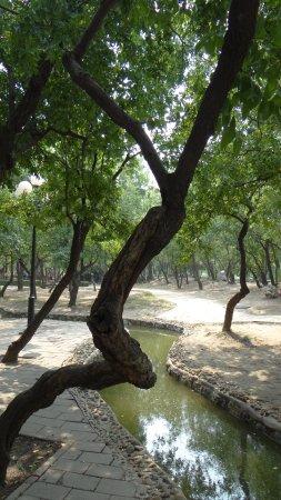 Tianjin People's Park: Petit ruisseau artificiel !