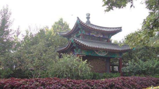 Tianjin People's Park: Toujours un peu pareil mais on aime, non ?