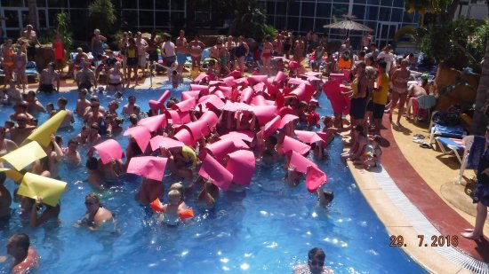 flamingo s birthday pool party picture of hotel flamingo oasis