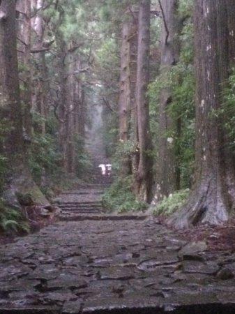 Nachikatsura-cho, Giappone: 雰囲気満点の石畳