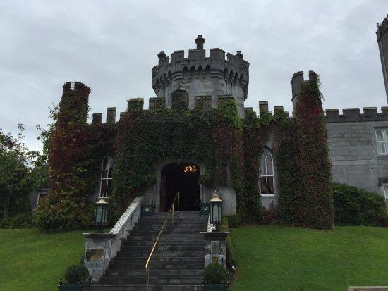 Newmarket-on-Fergus, Irlanda: Quinn for a day!