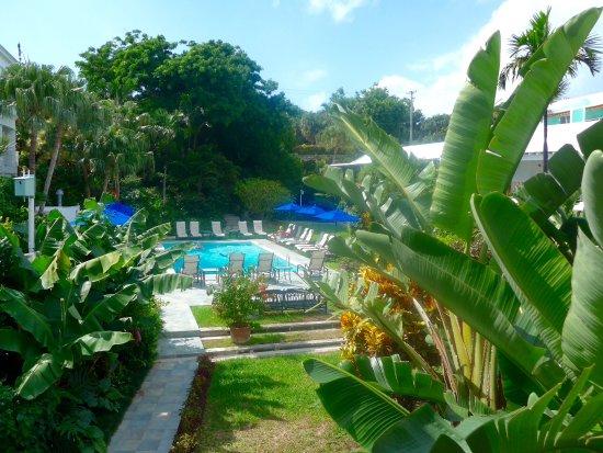 Rosedon Hotel: The pool in Rosedon