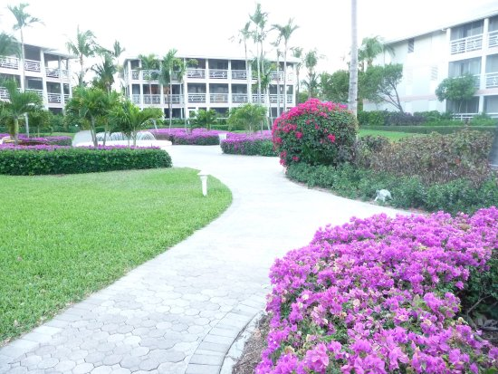 Ocean Club West: The resort grounds are beautiful and well maintained