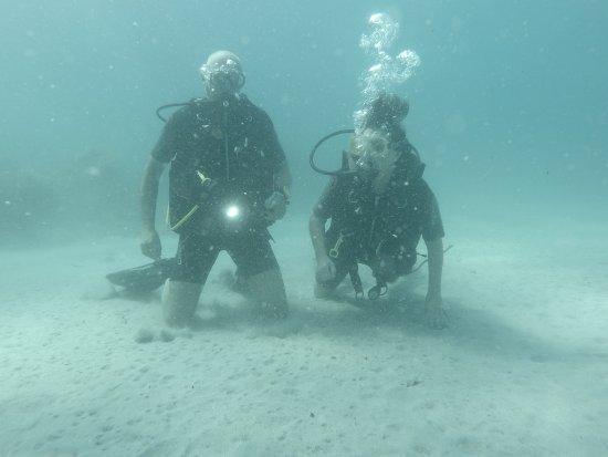 Bluewater Scuba : 10 metre dive Sept 2016