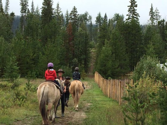 ‪‪Valemount‬, كندا: kids going for a trail raid on the horses‬