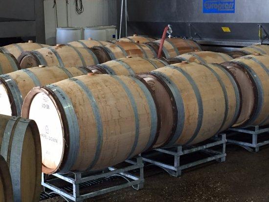 Tenterden, UK: Wine casks