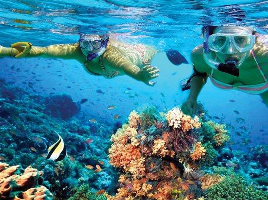 Playa Mujeres, Mexico: snorkeling at Isla Mujeres