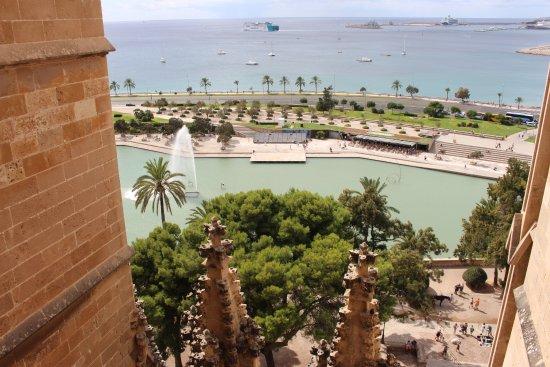 Terrazas de la Catedral de Palma