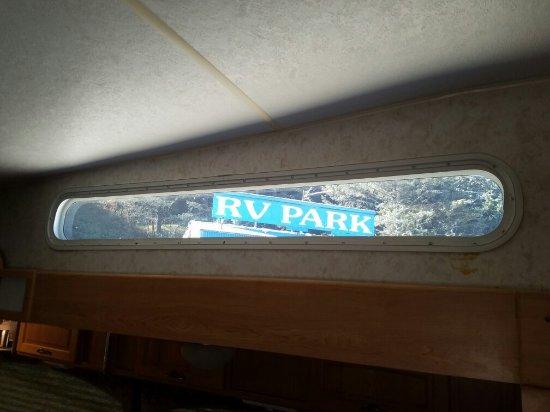 Turtle Rock Resort照片