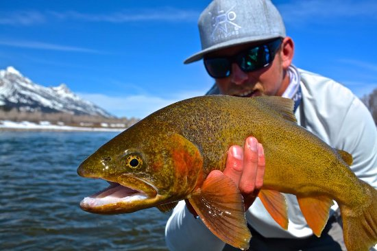Jackson Hole, Ουαϊόμινγκ: Fall fishing with Will Mook