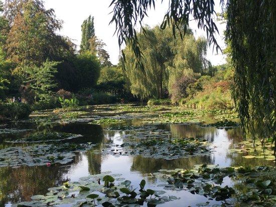Claude Monet's House and Gardens: etang
