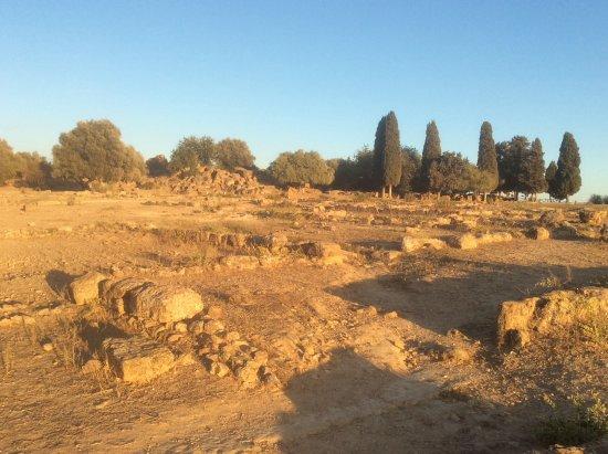 Valley of the Temples (Valle dei Templi): Ruinas de la ciudad y al fondo los jardines Kolymbethra. El más antiguo de la humanidad