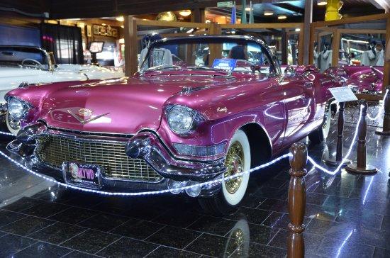 Resultado de imagem para hollywood dream cars (museu do automóvel)